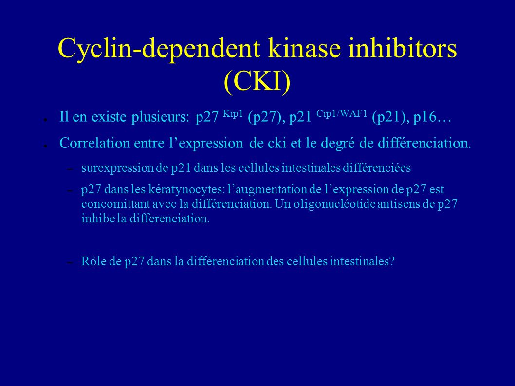 p27(Kip1) is an inducer of intestinal epithelial cell differentiation.