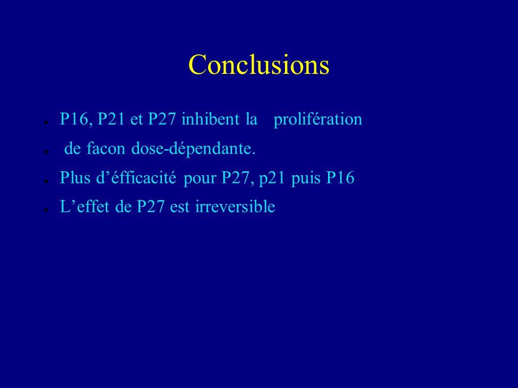 Cki et prolifération A:1 jour après infection B: effet dose de ladenovirus sur la prolifératiopn C: étude cinétique
