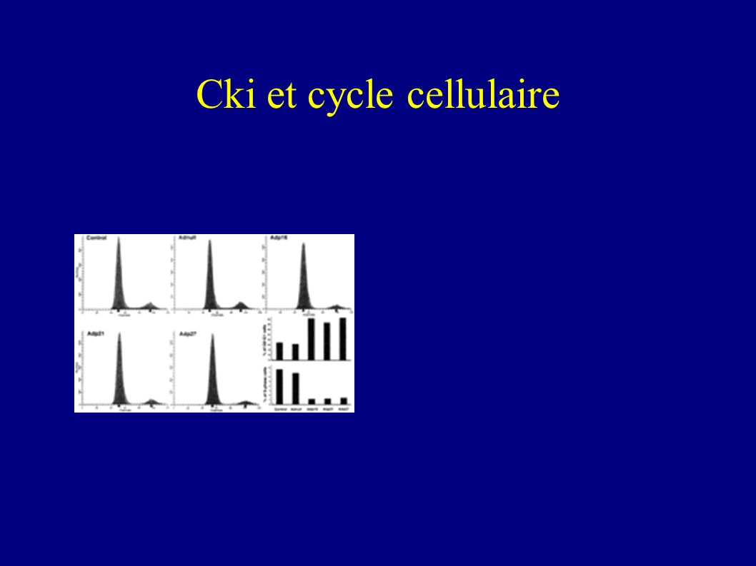 Surexpression des cki et cycle cellulaire Pic G1 Pic G2-S-M Intensité de fluorescence Contenu en ADN Nombre de cellules