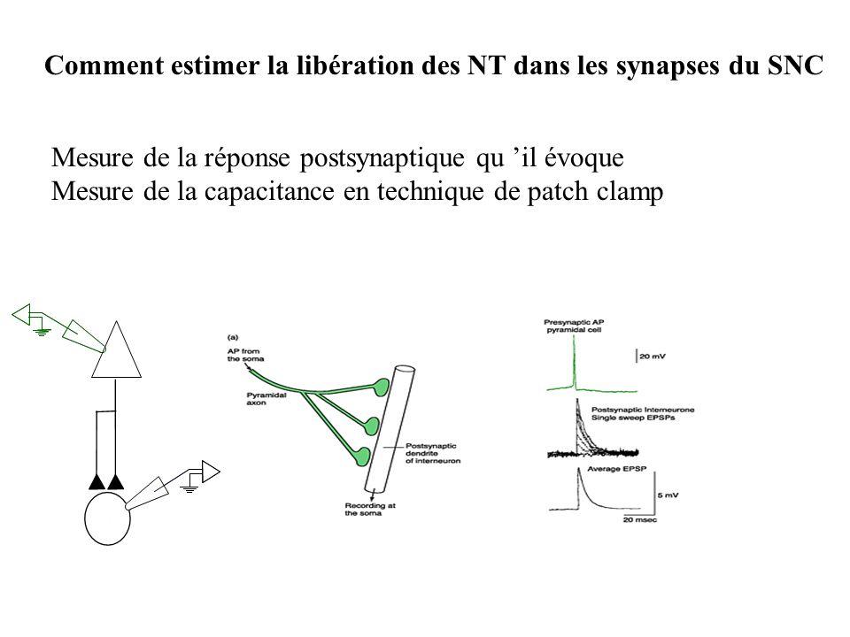 Comment estimer la libération des NT dans les synapses du SNC Mesure de la réponse postsynaptique qu il évoque Mesure de la capacitance en technique d