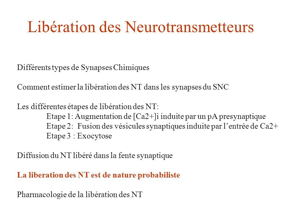 Différents types de Synapses Chimiques Comment estimer la libération des NT dans les synapses du SNC Les différentes étapes de libération des NT: Etap