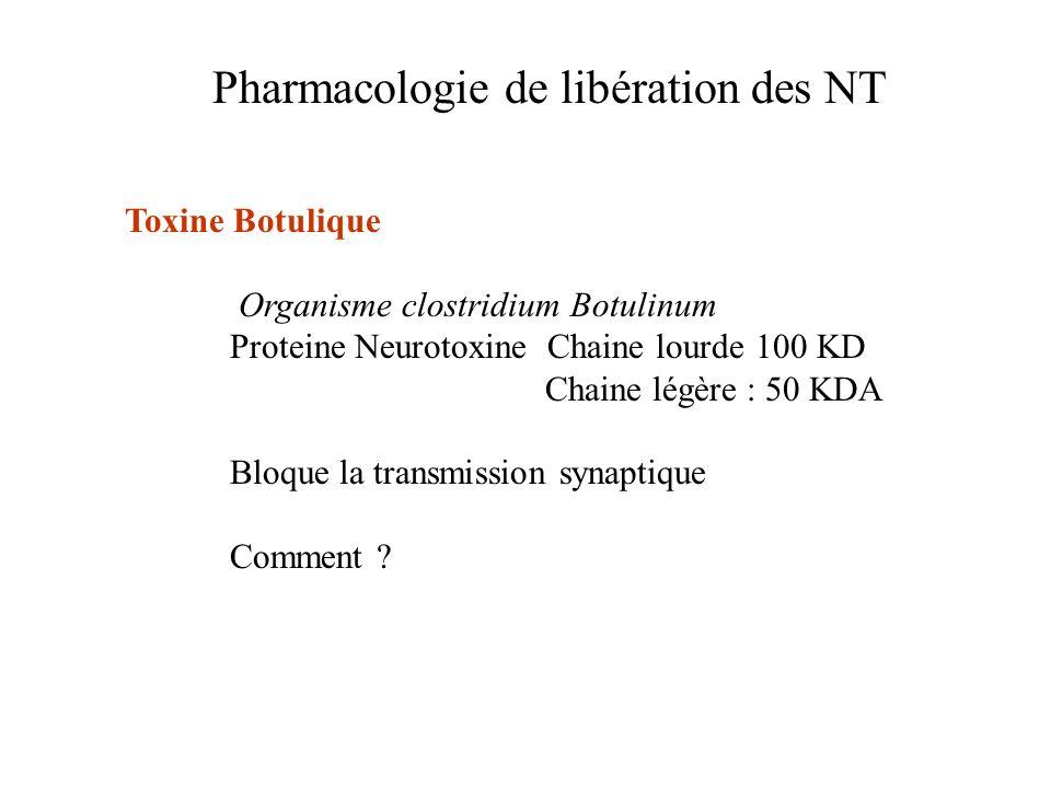 Pharmacologie de libération des NT Toxine Botulique Organisme clostridium Botulinum Proteine Neurotoxine Chaine lourde100 KD Chaine légère : 50 KDA Bl