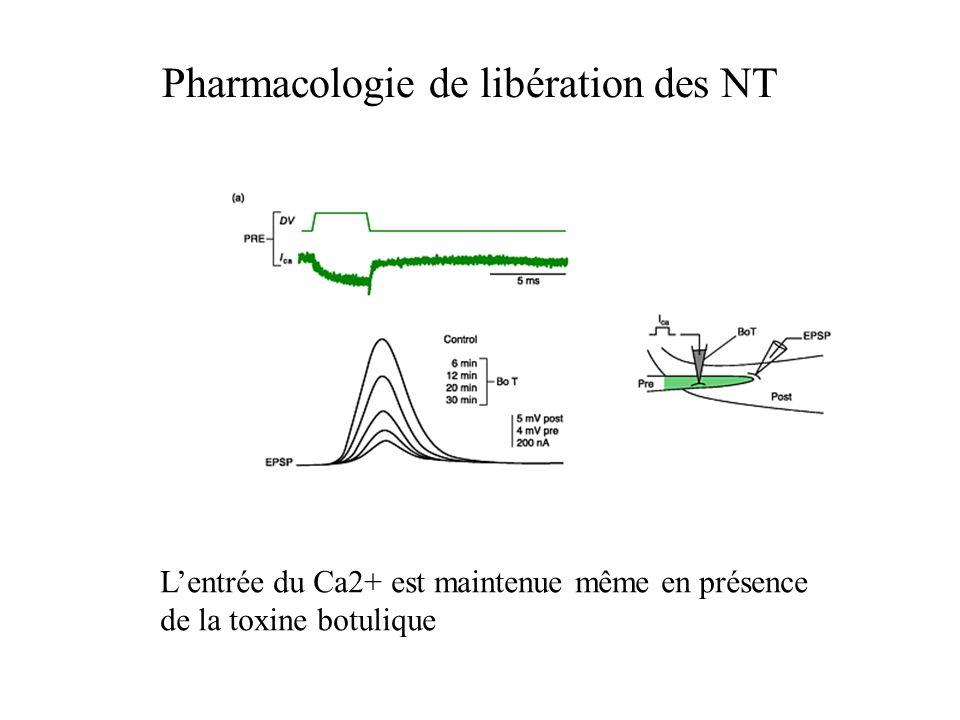 Pharmacologie de libération des NT Lentrée du Ca2+ est maintenue même en présence de la toxine botulique