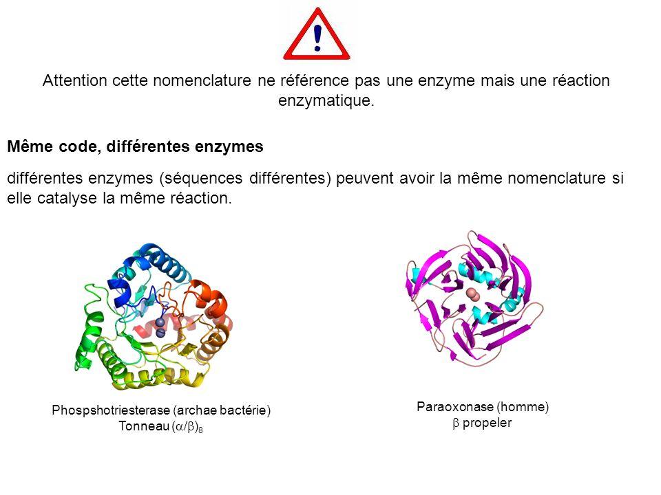 Attention cette nomenclature ne référence pas une enzyme mais une réaction enzymatique. Phospshotriesterase (archae bactérie) Tonneau ( / ) 8 Paraoxon