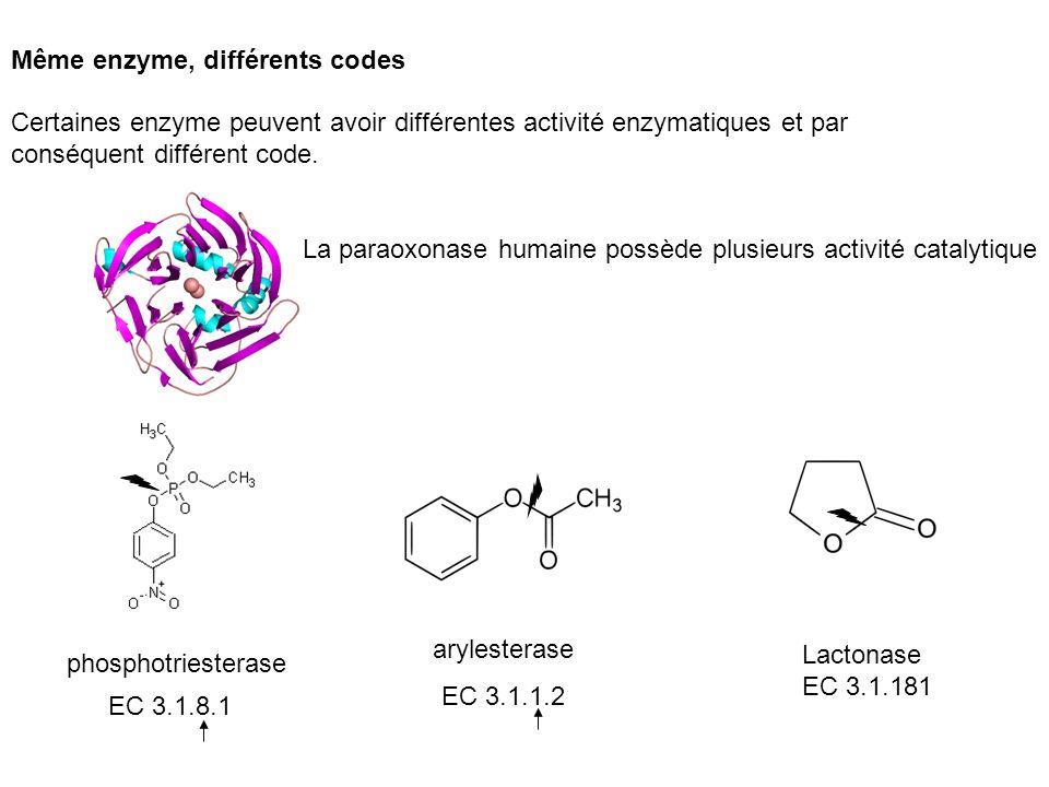 Certaines enzyme peuvent avoir différentes activité enzymatiques et par conséquent différent code. Même enzyme, différents codes La paraoxonase humain