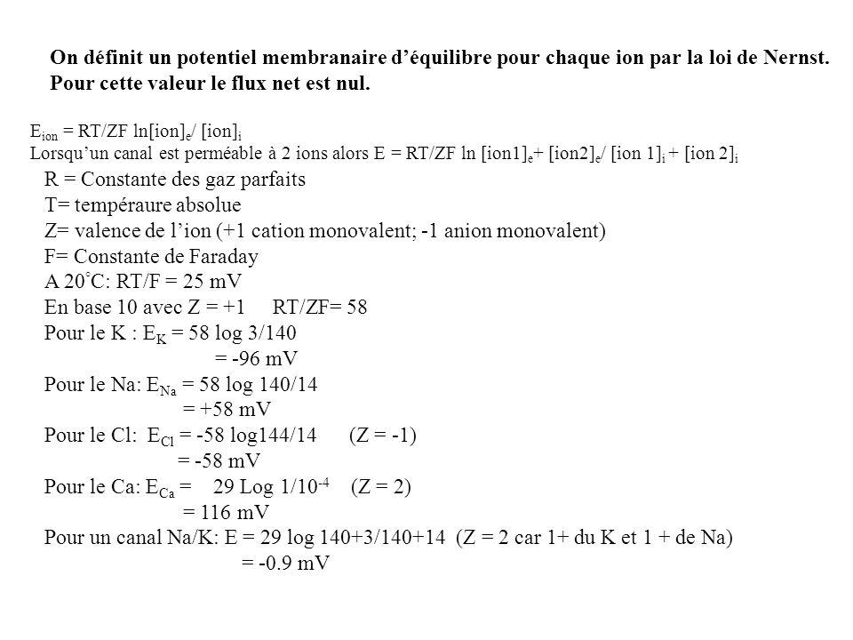 On définit un potentiel membranaire déquilibre pour chaque ion par la loi de Nernst. Pour cette valeur le flux net est nul. E ion = RT/ZF ln[ion] e /