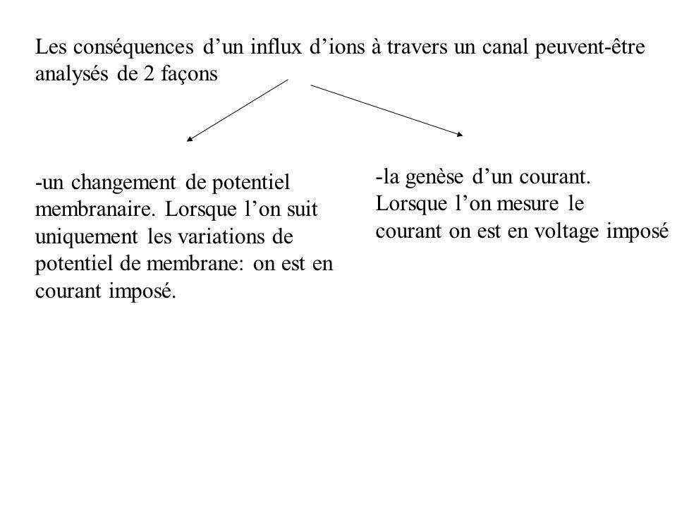 Les conséquences dun influx dions à travers un canal peuvent-être analysés de 2 façons -un changement de potentiel membranaire. Lorsque lon suit uniqu