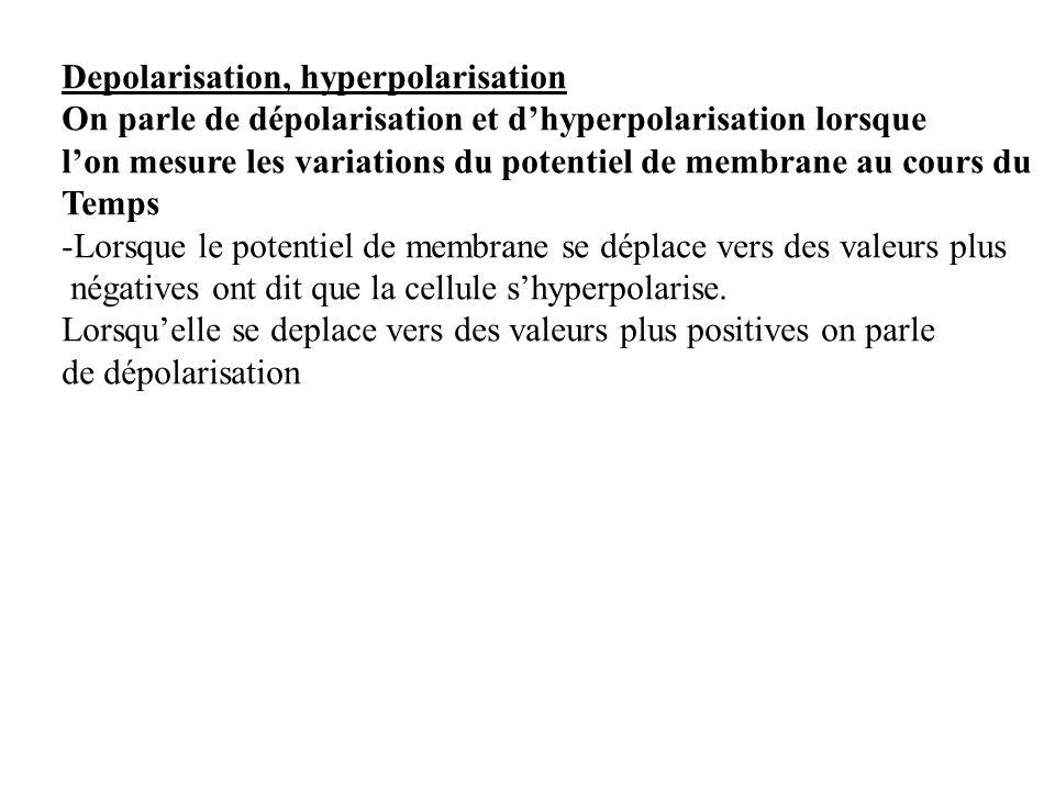 Depolarisation, hyperpolarisation On parle de dépolarisation et dhyperpolarisation lorsque lon mesure les variations du potentiel de membrane au cours