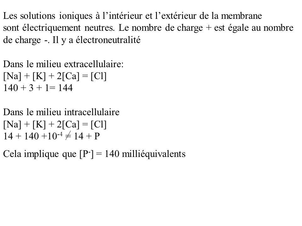 Les solutions ioniques à lintérieur et lextérieur de la membrane sont électriquement neutres. Le nombre de charge + est égale au nombre de charge -. I