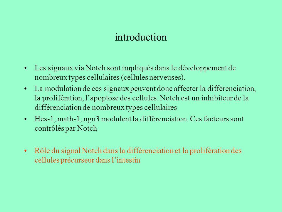 introduction Les signaux via Notch sont impliqués dans le développement de nombreux types cellulaires (cellules nerveuses).