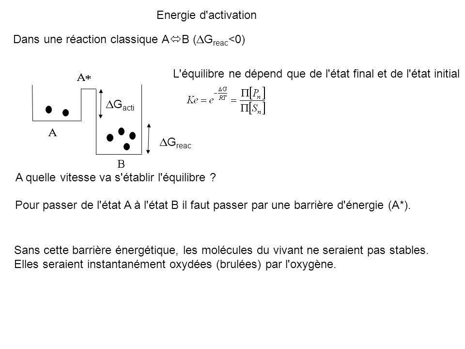 Energie d'activation G reac L'équilibre ne dépend que de l'état final et de l'état initial A quelle vitesse va s'établir l'équilibre ? Pour passer de