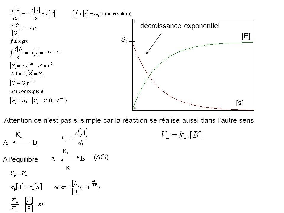 A l'équilibre Attention ce n'est pas si simple car la réaction se réalise aussi dans l'autre sens K-K- [P] [s] décroissance exponentiel S0S0 K+K+ K-K-