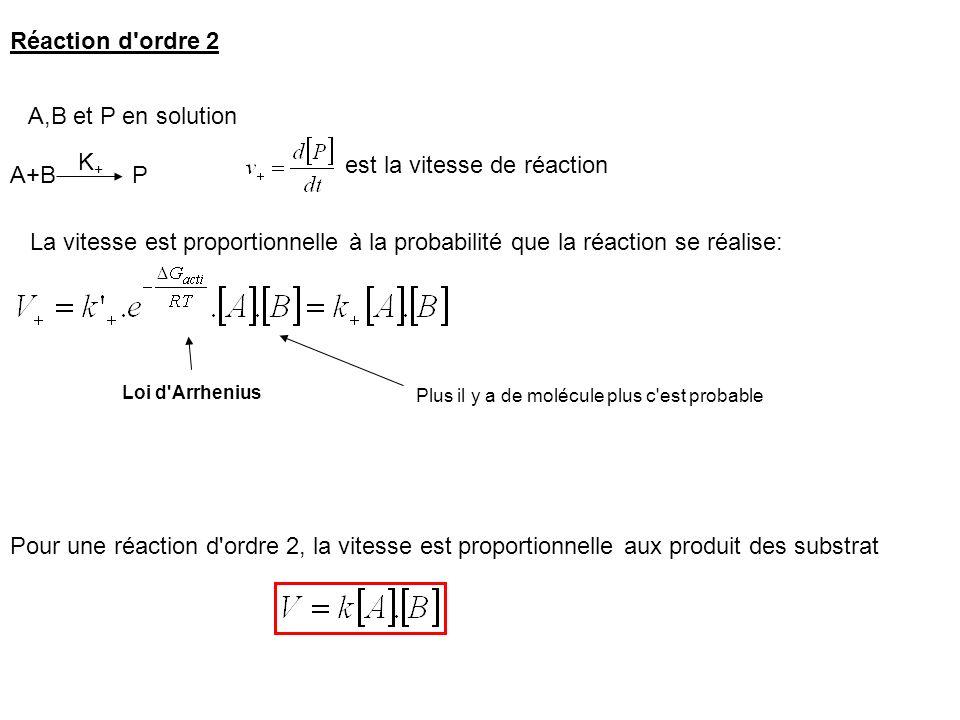 Réaction d'ordre 2 A+B P A,B et P en solution K+K+ est la vitesse de réaction La vitesse est proportionnelle à la probabilité que la réaction se réali