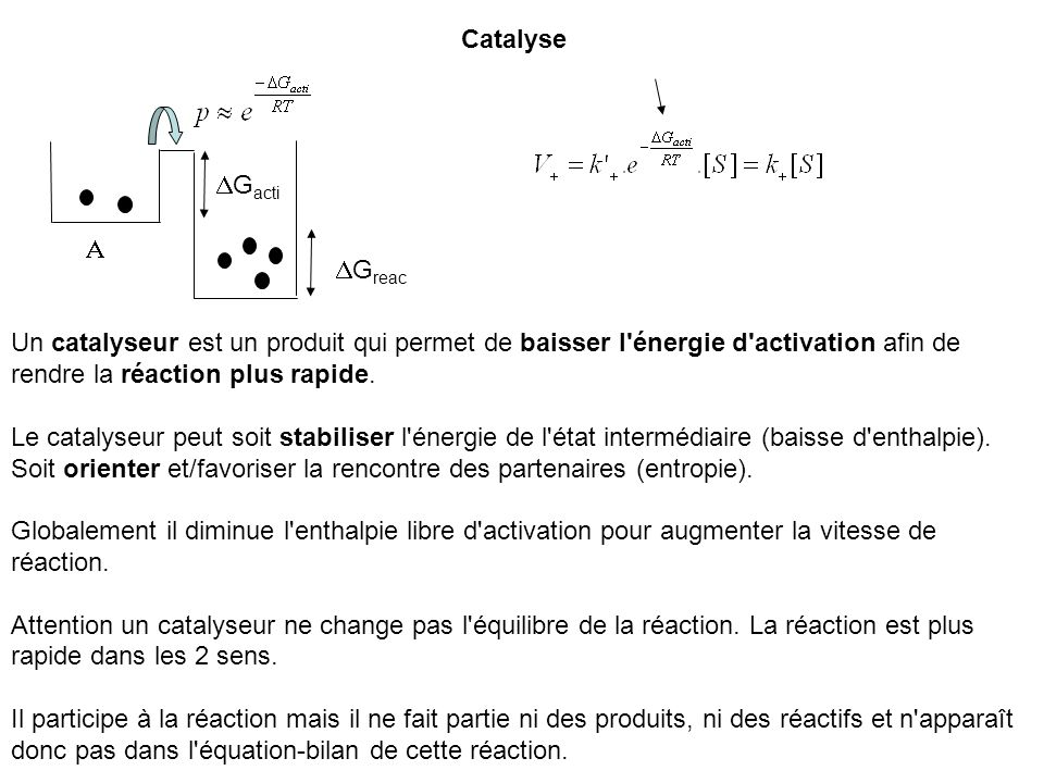 Catalyse G reac G acti Un catalyseur est un produit qui permet de baisser l'énergie d'activation afin de rendre la réaction plus rapide. Le catalyseur