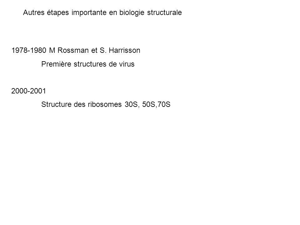 Autres étapes importante en biologie structurale 1978-1980 M Rossman et S. Harrisson Première structures de virus 2000-2001 Structure des ribosomes 30