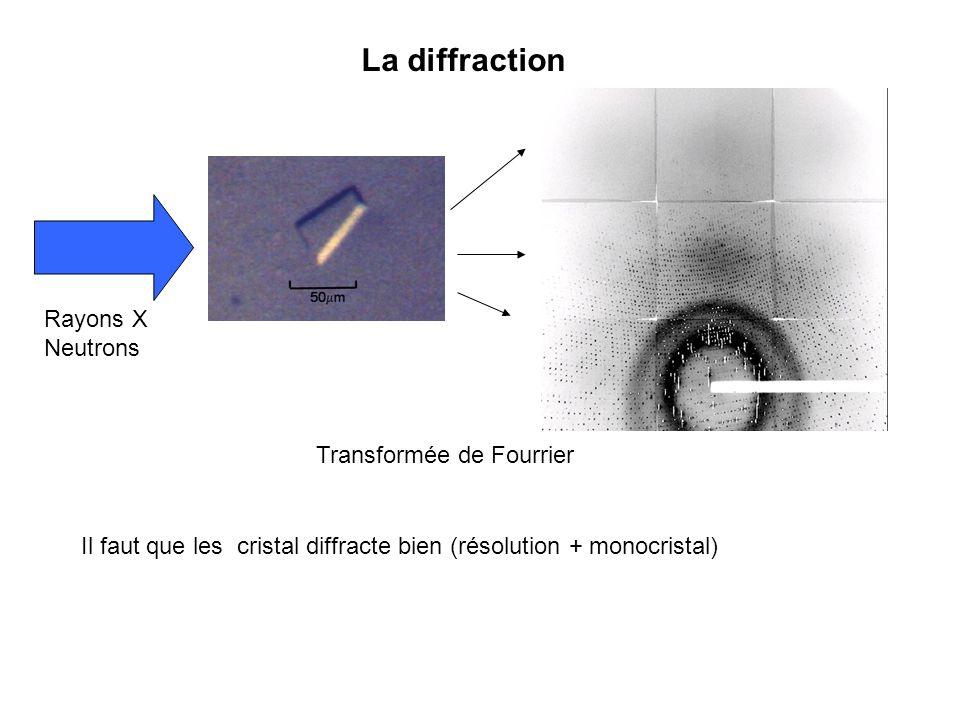 La diffraction Rayons X Neutrons Transformée de Fourrier Il faut que les cristal diffracte bien (résolution + monocristal)