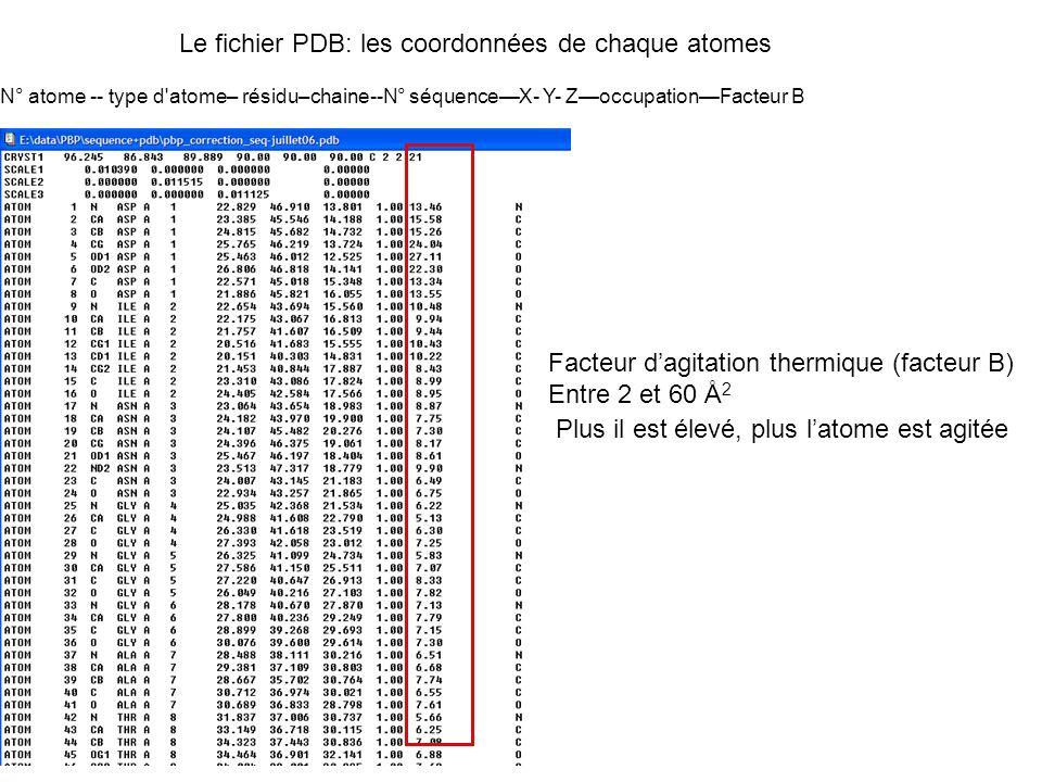 Facteur dagitation thermique (facteur B) Entre 2 et 60 Å 2 Plus il est élevé, plus latome est agitée Le fichier PDB: les coordonnées de chaque atomes