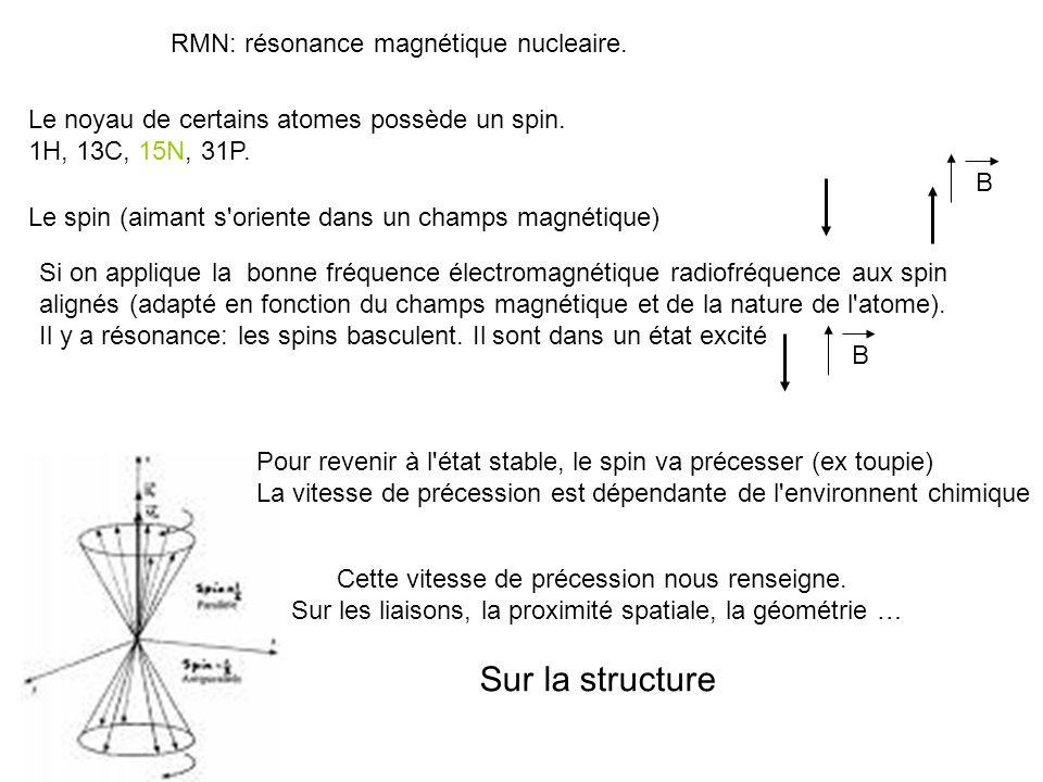 RMN: résonance magnétique nucleaire. Le noyau de certains atomes possède un spin. 1H, 13C, 15N, 31P. Le spin (aimant s'oriente dans un champs magnétiq