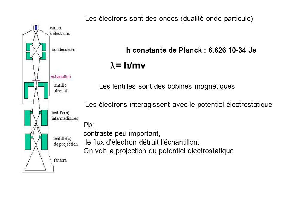 Les électrons sont des ondes (dualité onde particule) = h/mv h constante de Planck : 6.626 10-34 Js Les lentilles sont des bobines magnétiques Les éle