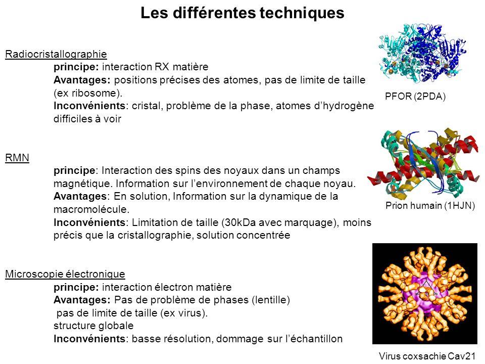 Les différentes techniques Radiocristallographie principe: interaction RX matière Avantages: positions précises des atomes, pas de limite de taille (e