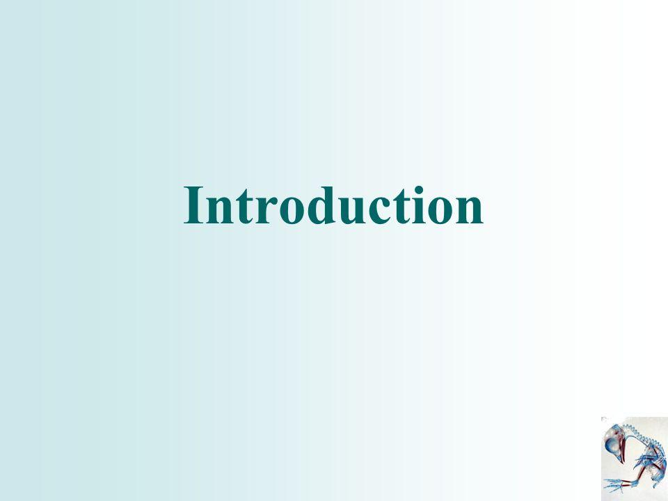 Conclusion 1 ère partie FGF4 induit et régule lexpression de Shh.