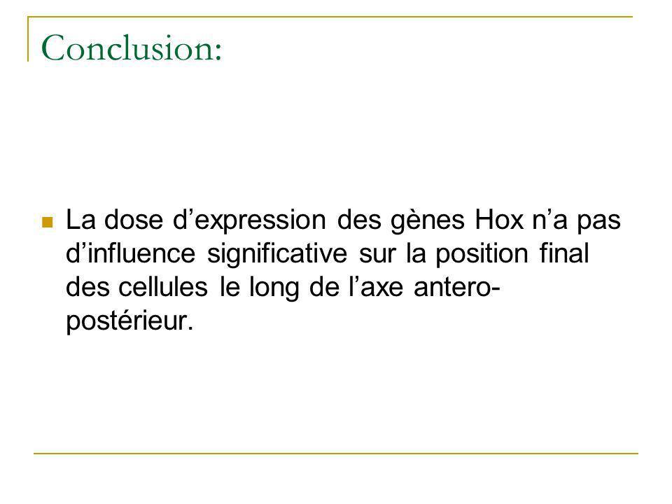Conclusion: La dose dexpression des gènes Hox na pas dinfluence significative sur la position final des cellules le long de laxe antero- postérieur.