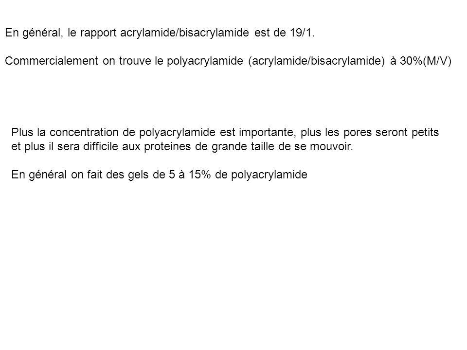 En général, le rapport acrylamide/bisacrylamide est de 19/1. Commercialement on trouve le polyacrylamide (acrylamide/bisacrylamide) à 30%(M/V) Plus la