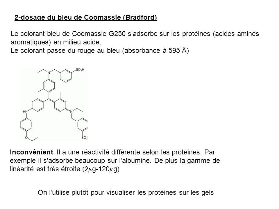 2-dosage du bleu de Coomassie (Bradford) Le colorant bleu de Coomassie G250 s'adsorbe sur les protéines (acides aminés aromatiques) en milieu acide. L