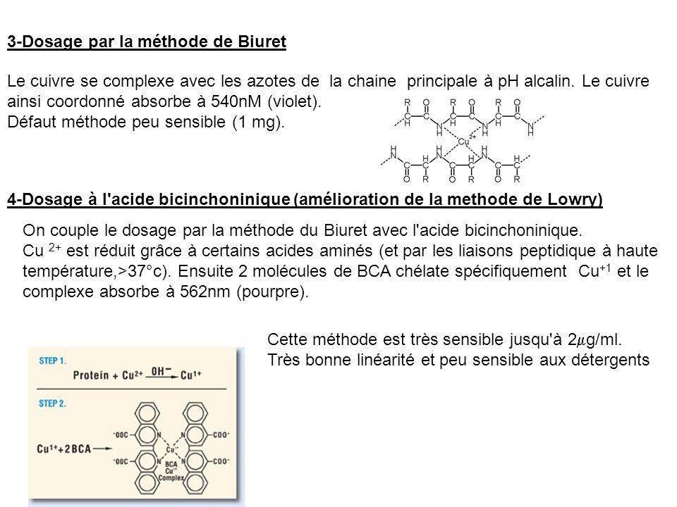 4-Dosage à l acide bicinchoninique (amélioration de la methode de Lowry) 3-Dosage par la méthode de Biuret Le cuivre se complexe avec les azotes de la chaine principale à pH alcalin.