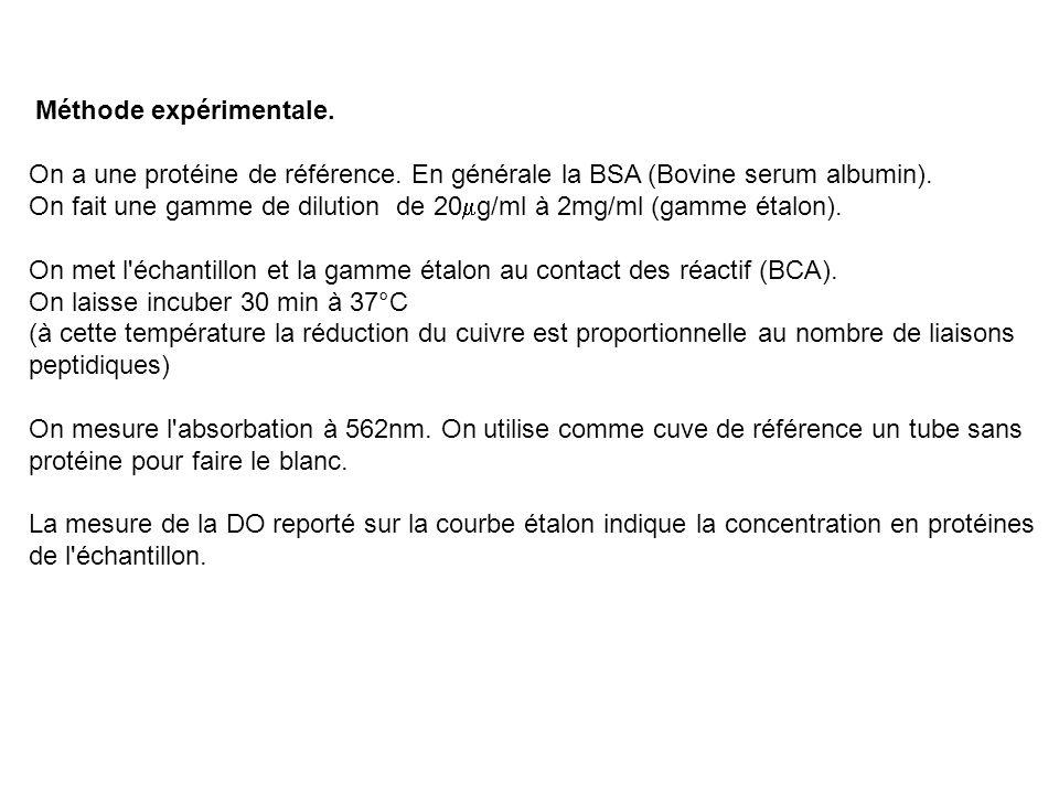 Méthode expérimentale. On a une protéine de référence. En générale la BSA (Bovine serum albumin). On fait une gamme de dilution de 20 g/ml à 2mg/ml (g