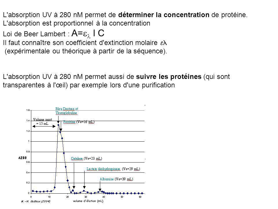 L'absorption UV à 280 nM permet aussi de suivre les protéines (qui sont transparentes à l'œil) par exemple lors d'une purification L'absorption UV à 2