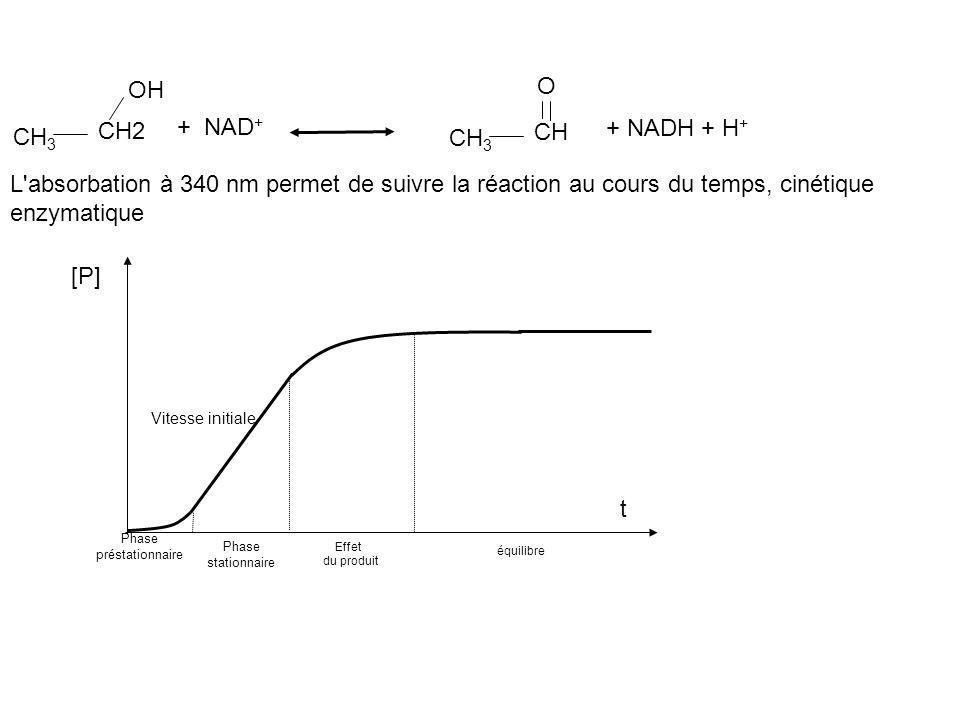 CH 3 CH2 OH CH 3 CH O + NAD + + NADH + H + L'absorbation à 340 nm permet de suivre la réaction au cours du temps, cinétique enzymatique Phase préstati