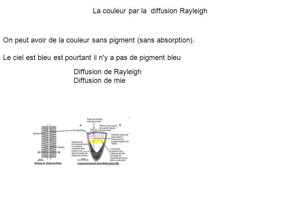 La couleur par la diffusion Rayleigh On peut avoir de la couleur sans pigment (sans absorption). Le ciel est bleu est pourtant il n'y a pas de pigment
