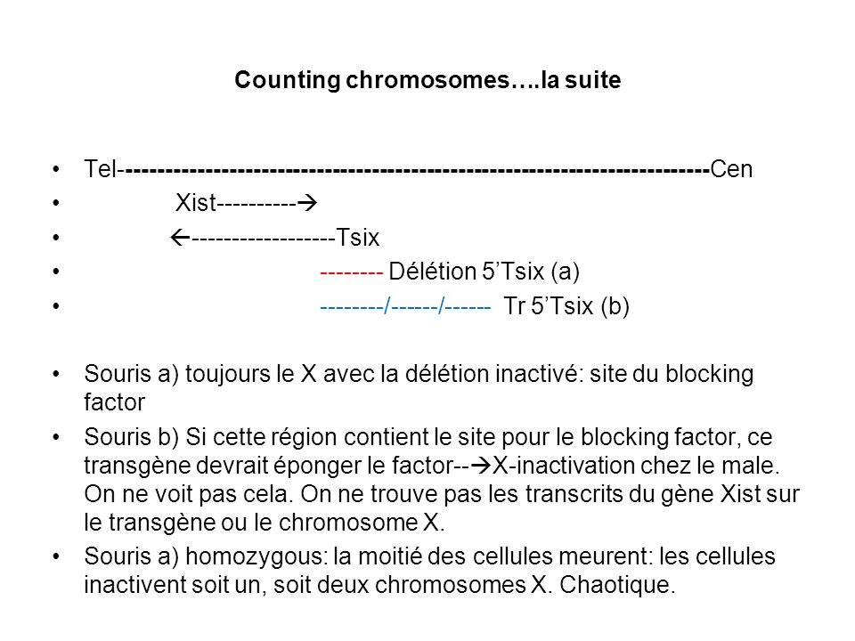 Counting chromosomes….la suite Tel---------------------------------------------------------------------------Cen Xist---------- ------------------Tsix