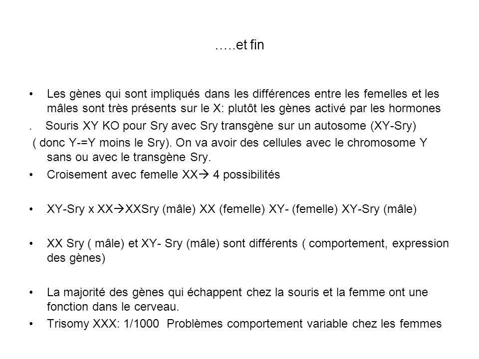 …..et fin Les gènes qui sont impliqués dans les différences entre les femelles et les mâles sont très présents sur le X: plutôt les gènes activé par l
