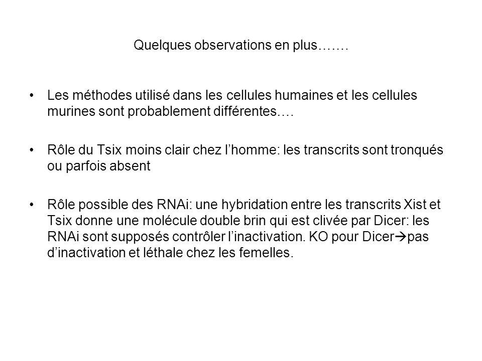 Quelques observations en plus……. Les méthodes utilisé dans les cellules humaines et les cellules murines sont probablement différentes…. Rôle du Tsix