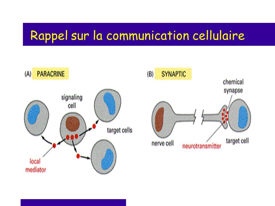 Rappel sur la communication cellulaire