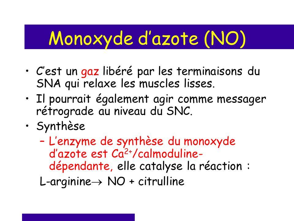Monoxyde dazote (NO) Cest un gaz libéré par les terminaisons du SNA qui relaxe les muscles lisses. Il pourrait également agir comme messager rétrograd