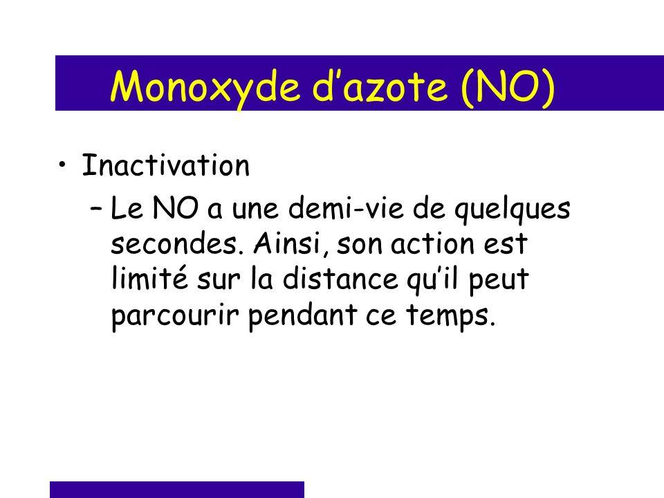 Monoxyde dazote (NO) Inactivation –Le NO a une demi-vie de quelques secondes. Ainsi, son action est limité sur la distance quil peut parcourir pendant