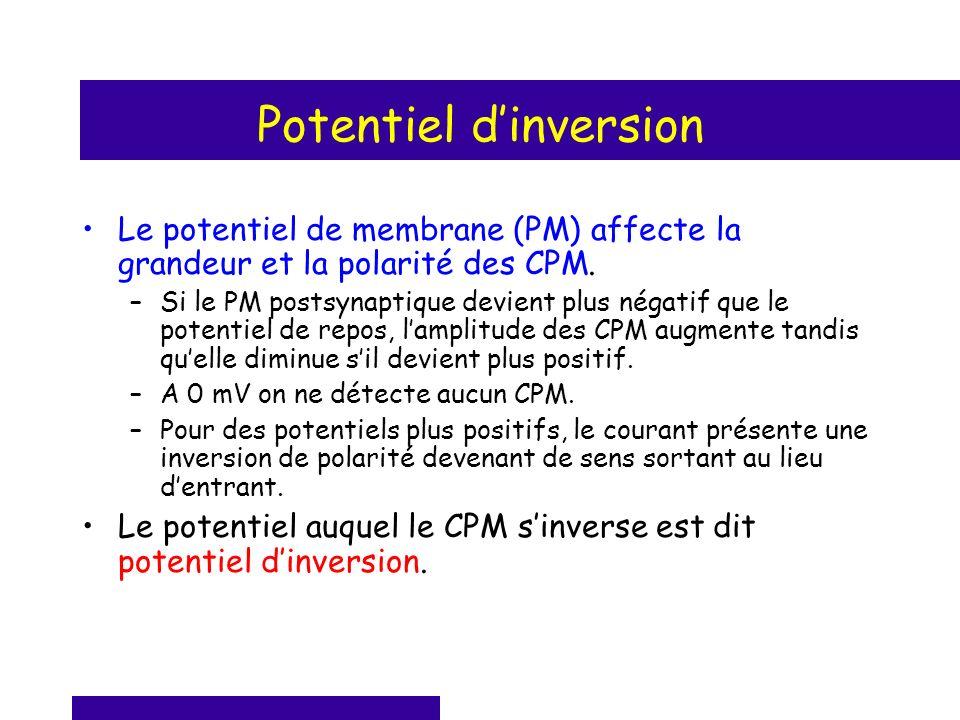Potentiel dinversion Le potentiel de membrane (PM) affecte la grandeur et la polarité des CPM. –Si le PM postsynaptique devient plus négatif que le po