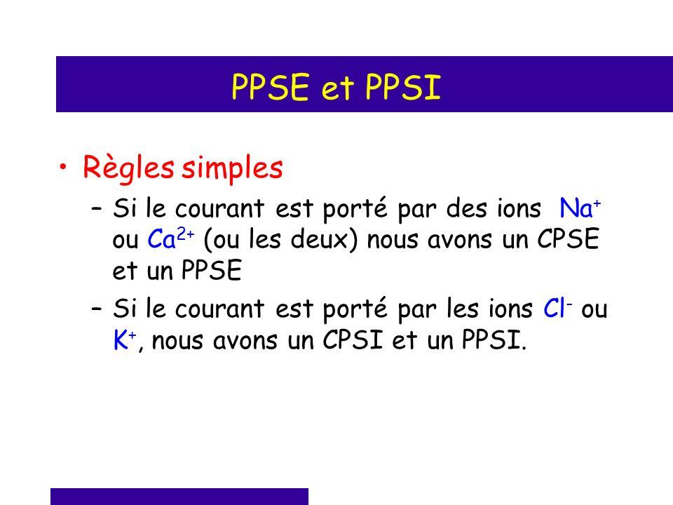 PPSE et PPSI Règles simples –Si le courant est porté par des ions Na + ou Ca 2+ (ou les deux) nous avons un CPSE et un PPSE –Si le courant est porté p