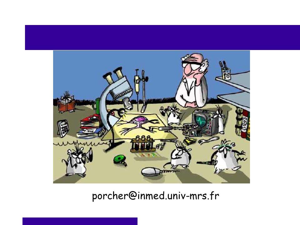 porcher@inmed.univ-mrs.fr