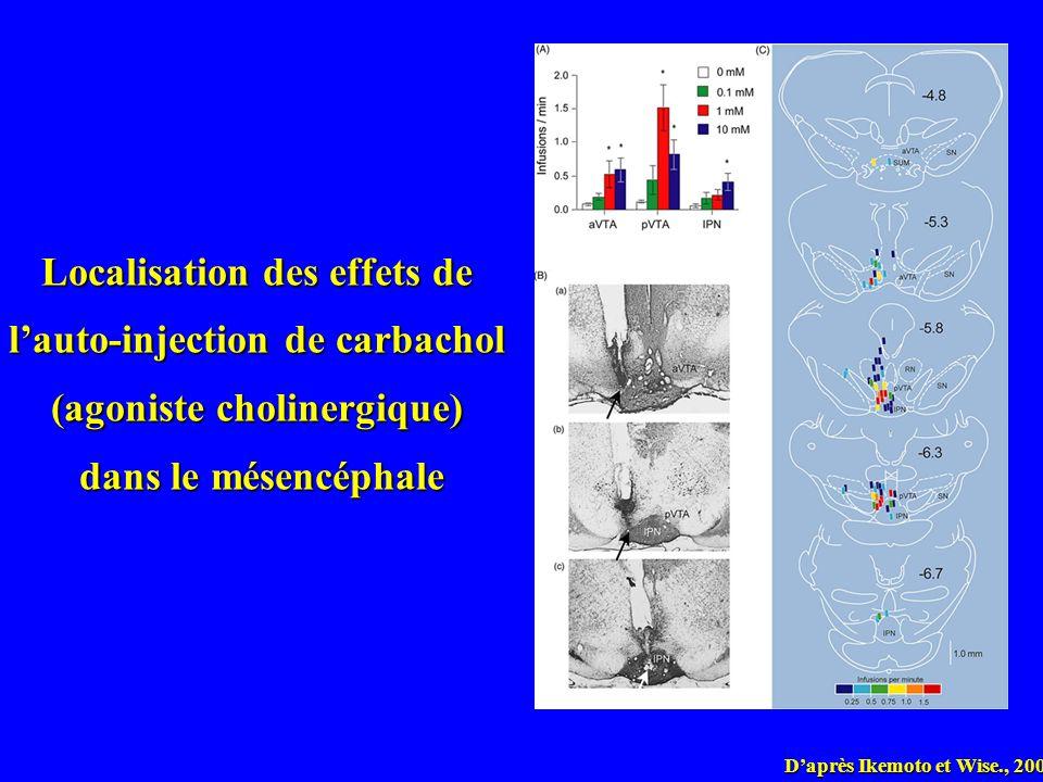 Daprès Ikemoto et Wise., 2004 Localisation des effets de lauto-injection de carbachol (agoniste cholinergique) dans le mésencéphale dans le mésencépha