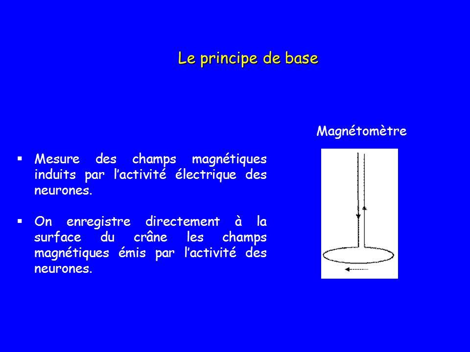 Mesure des champs magnétiques induits par lactivité électrique des neurones. On enregistre directement à la surface du crâne les champs magnétiques ém