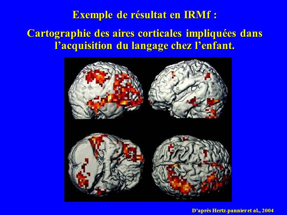 Exemple de résultat en IRMf : Cartographie des aires corticales impliquées dans lacquisition du langage chez lenfant. Daprès Hertz-pannier et al., 200