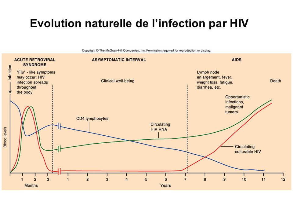Progression from HIV infection to AIDS Time varies - several months to >12 years Affected by - inocula type and amount of virus - strain and virulence of virus - overall health of host - other infections present - anti-HIV therapy - genetic disposition