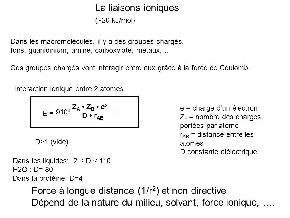 La liaisons ioniques (~20 kJ/mol) Dans les macromolécules, il y a des groupes chargés. Ions, guanidinium, amine, carboxylate, métaux,… Ces groupes cha