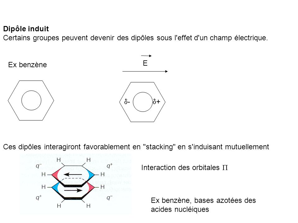 Dipôle induit Certains groupes peuvent devenir des dipôles sous l'effet d'un champ électrique. Ex benzène E + - Ces dipôles interagiront favorablement
