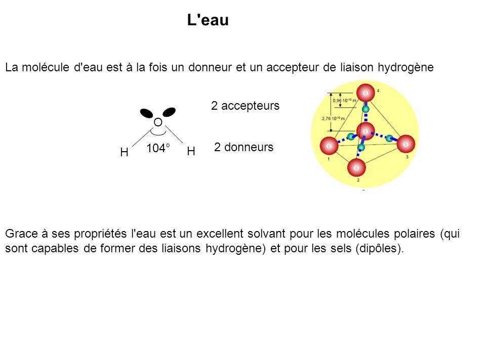 L'eau La molécule d'eau est à la fois un donneur et un accepteur de liaison hydrogène O H H 2 donneurs 2 accepteurs Grace à ses propriétés l'eau est u