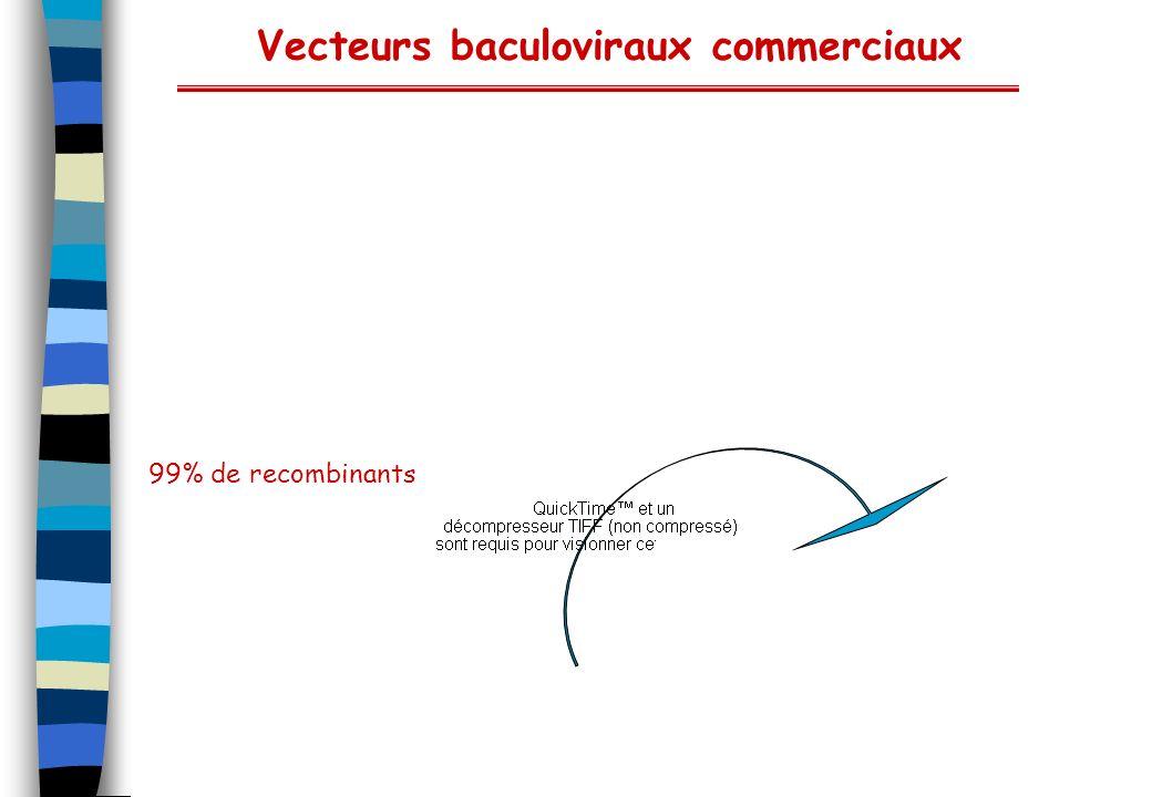 Vecteurs baculoviraux commerciaux 99% de recombinants